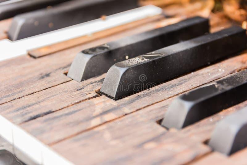 Brutna gamla pianotangenter royaltyfri bild