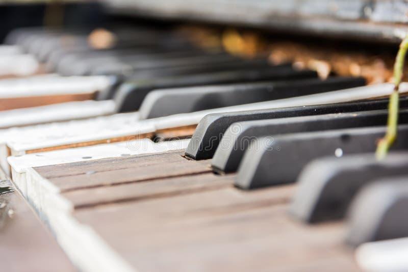 Brutna gamla pianotangenter arkivfoton