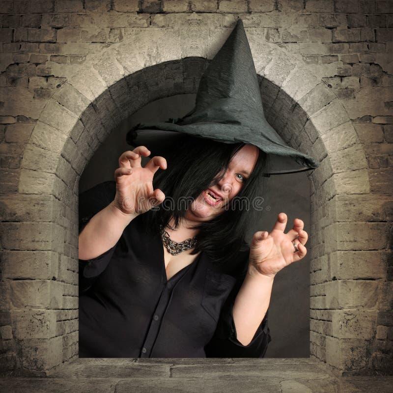 A bruxa. fotografia de stock royalty free