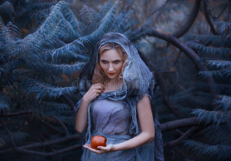 A bruxa astuto com cabelo encaracolado louro e o ódio em seus olhos, em um vestido de linho áspero velho com uma capa, mantêm env imagem de stock royalty free
