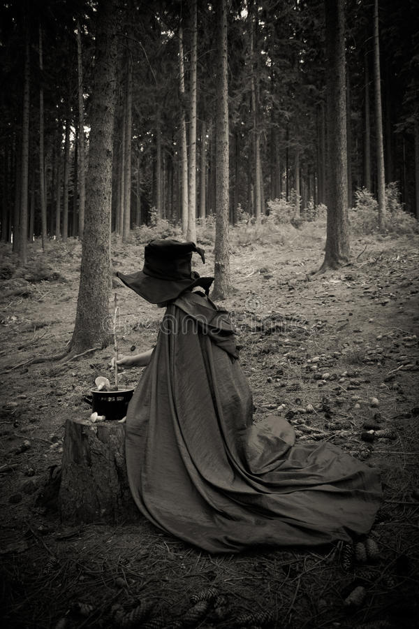 Bruxa com caçarola fotos de stock
