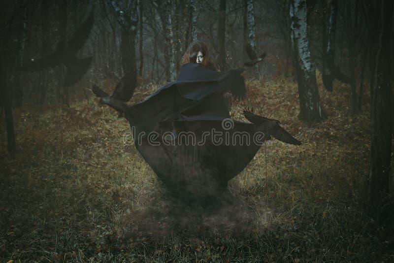 Bruxa da floresta com seus corvos imagens de stock