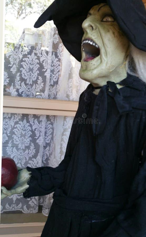 Bruxa de Dia das Bruxas assustador foto de stock royalty free