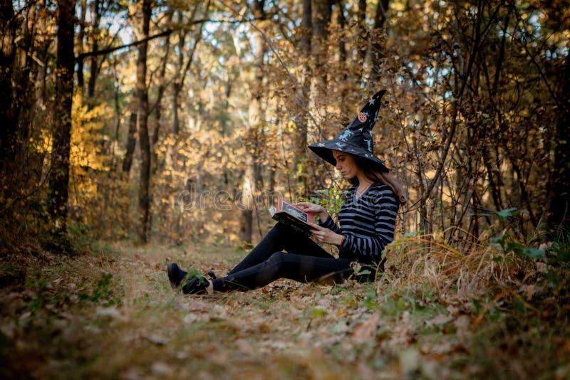 A bruxa de Dia das Bruxas nas madeiras lê um livro nas madeiras fotos de stock royalty free