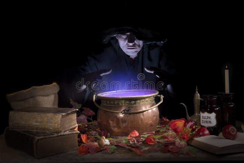 Bruxa de Halloween com caldeirão imagem de stock royalty free