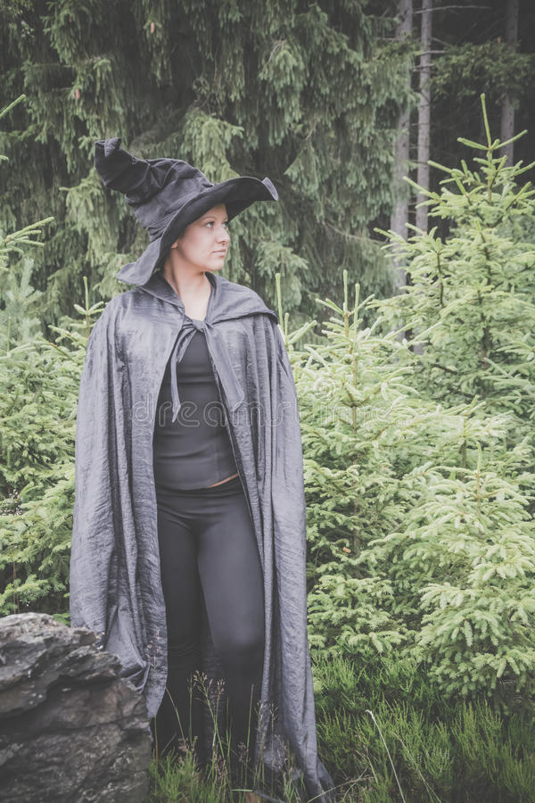 Bruxa na floresta imagens de stock royalty free