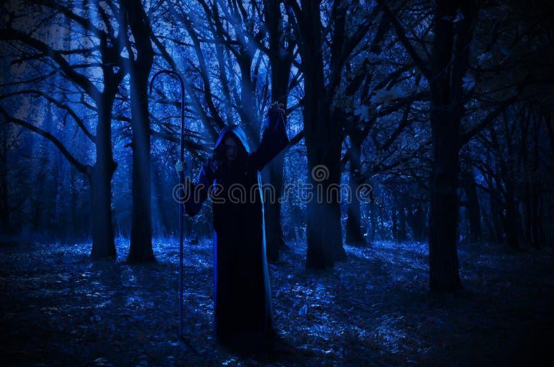 Bruxa na floresta da noite fotografia de stock royalty free