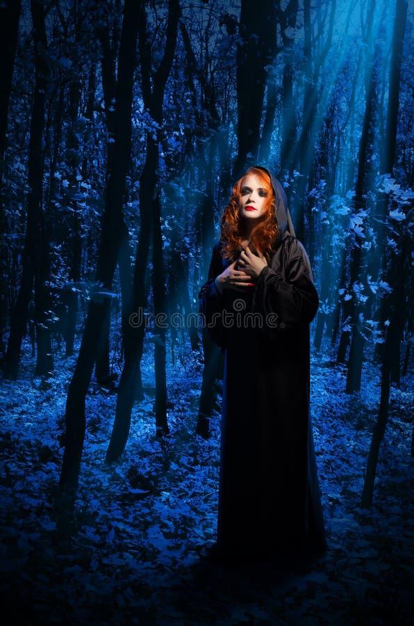 Bruxa na floresta da noite foto de stock royalty free