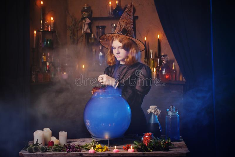 Bruxa nova na casa Conceito de Halloween fotografia de stock royalty free
