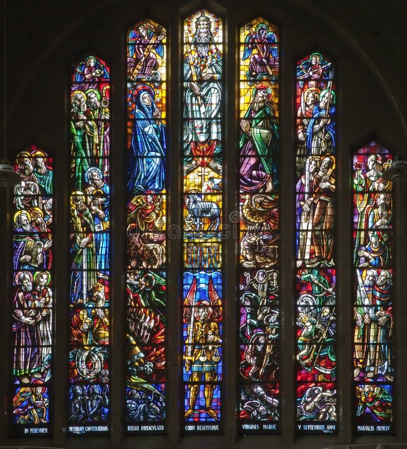 Bruxelas - Windowpane do coro da basílica imagem de stock