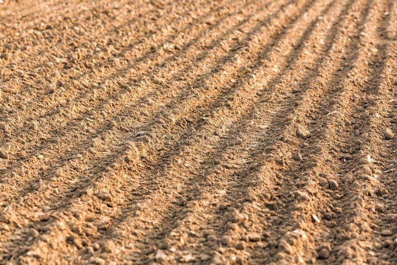 Bruzda rzędu wzór w zaoranym polu Tło lub tekstura z selekcyjną ostrością zdjęcie royalty free