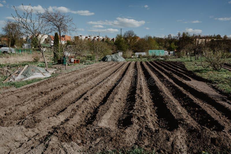 Bruzda wiosłuje w organicznie polu przygotowywającym dla zasadzać gruli manu zdjęcie royalty free