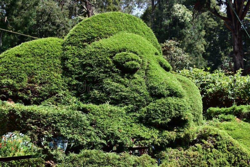 Bryant Park dans Kodaikanal Tamil Nadu, Inde photos stock