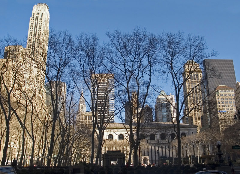 Bryant Park Trees. This is a wide angle shot of Bryant Park in Manhattan on a beautiful Winter day royalty free stock image