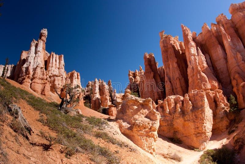 bryce峡谷不祥国家公园 免版税库存图片