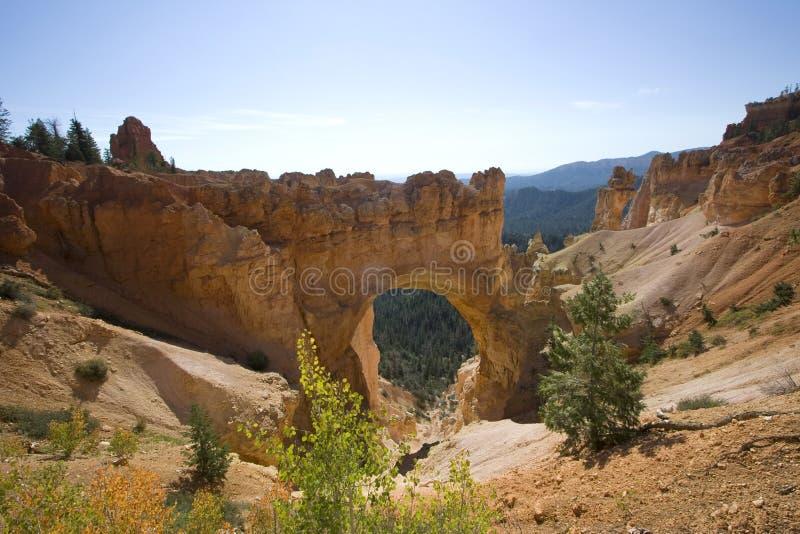 bryce峡谷国家公园犹他 库存照片