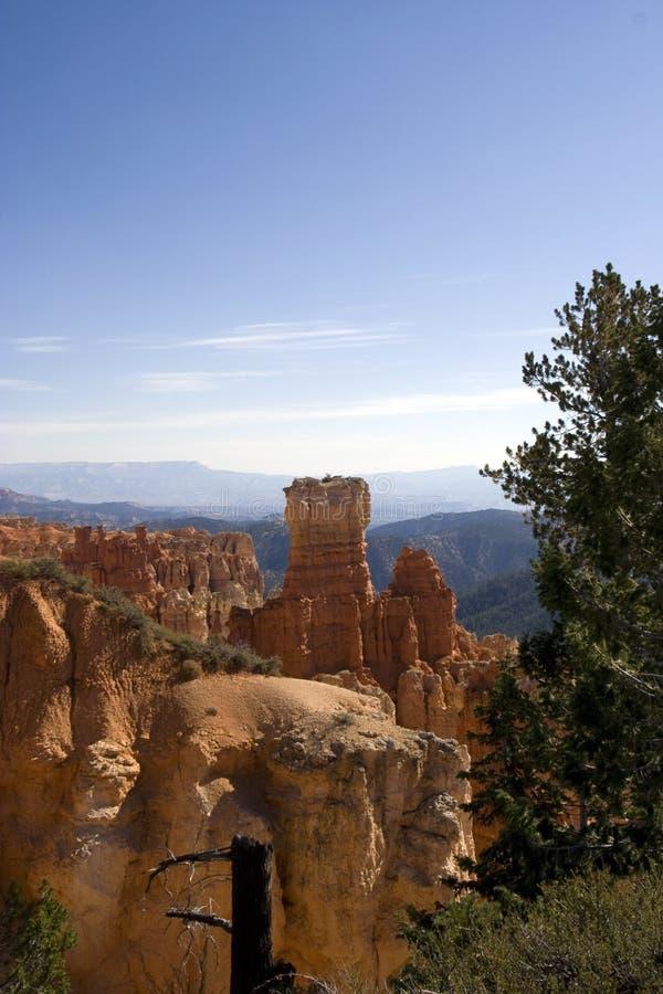 bryce峡谷国家公园犹他 库存图片