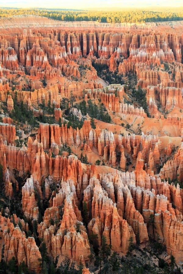 bryce峡谷国家公园 库存图片