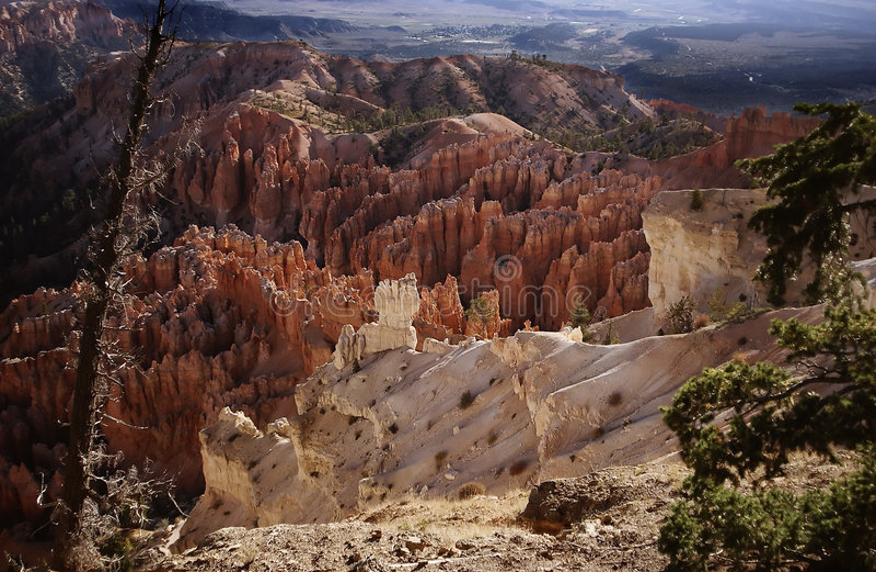 bryce峡谷n p 库存照片