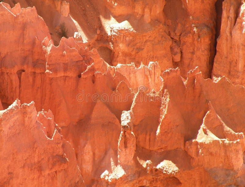 bryce εθνικό πάρκο φαραγγιών στοκ φωτογραφίες