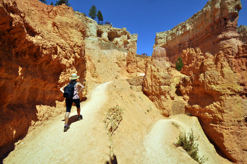 Download Bryce Canyon Stock Photography - Image: 27077952