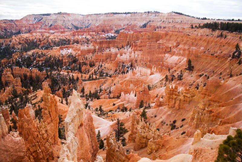 Bryce Canyon arkivfoto
