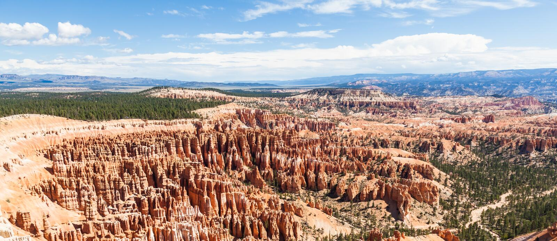 Bryce Canyon stock foto