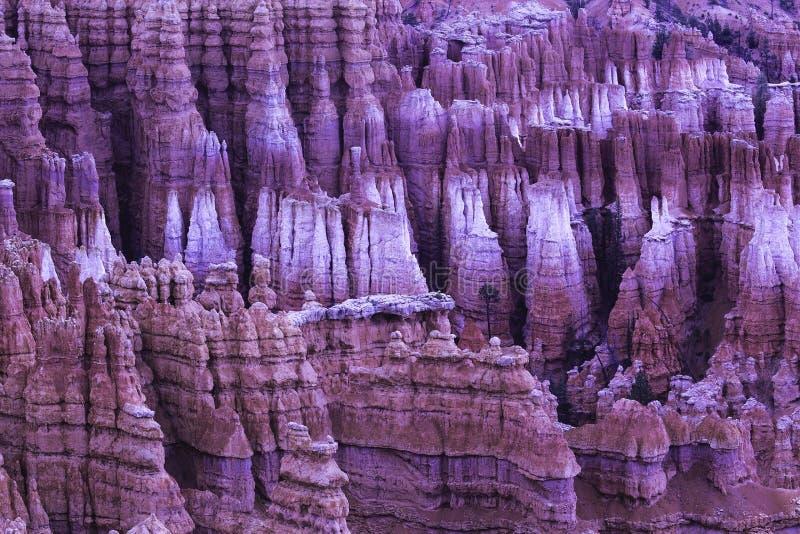 Bryce Canyon royalty-vrije stock fotografie