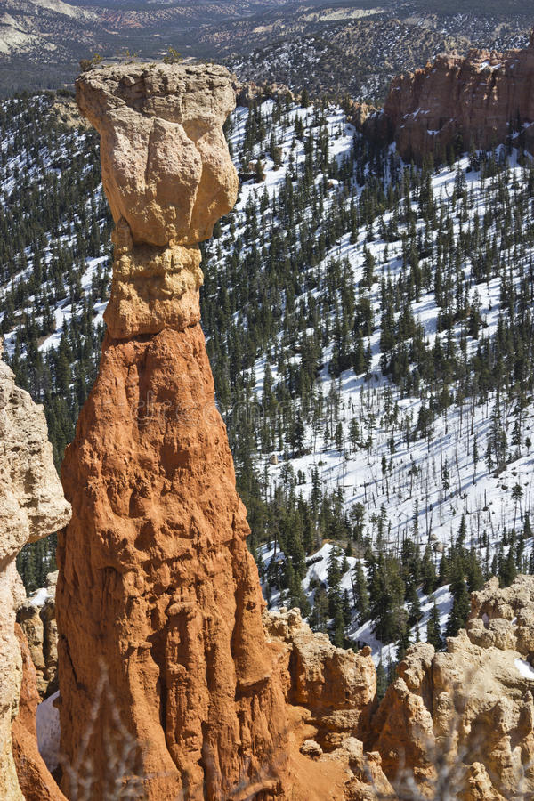 Bryce Canyon Formation royalty-vrije stock afbeeldingen
