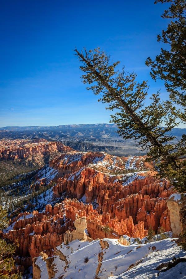 Bryce Canyon-gezichtspunt royalty-vrije stock fotografie