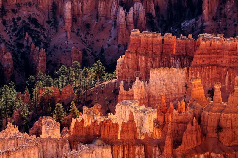 Bryce Canyon Glowing nel sole di primo mattino fotografia stock