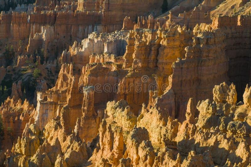 Bryce Canyon Hoodoo royalty-vrije stock afbeelding