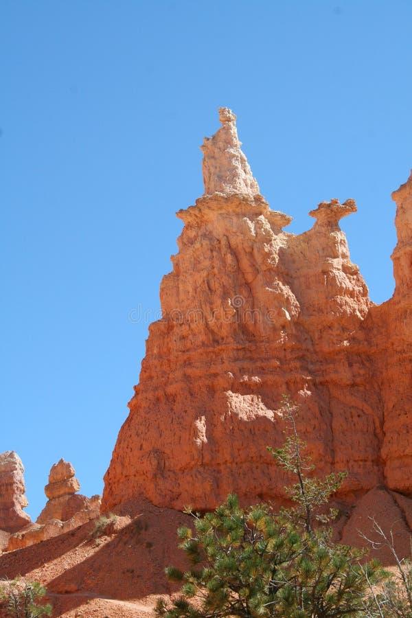 Bryce Canyon Hoodoo stock foto