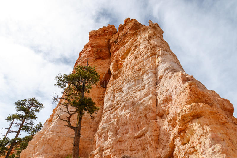 Bryce Canyon Hoodoo Formation-mening van Valleivloer royalty-vrije stock foto's