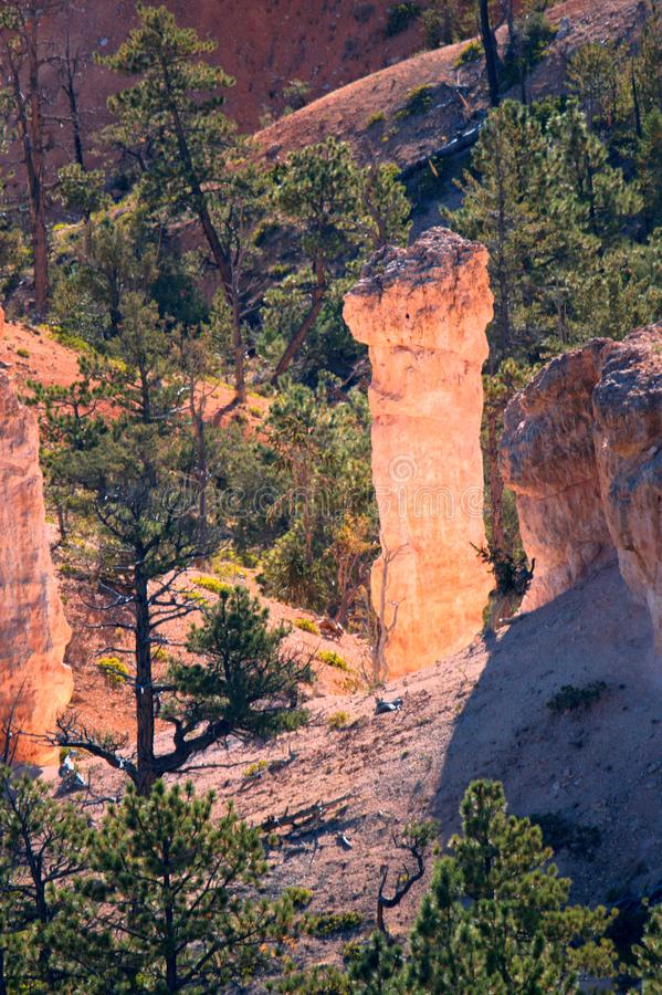 Bryce Canyon Hoodoo glüht von innen stockfotografie
