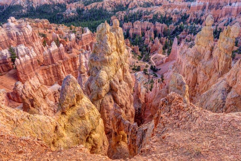 Bryce Canyon Hoodoo Landscape royalty-vrije stock foto's