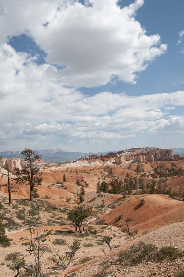 Bryce Canyon Hoodoos Desert Landscape lizenzfreies stockfoto