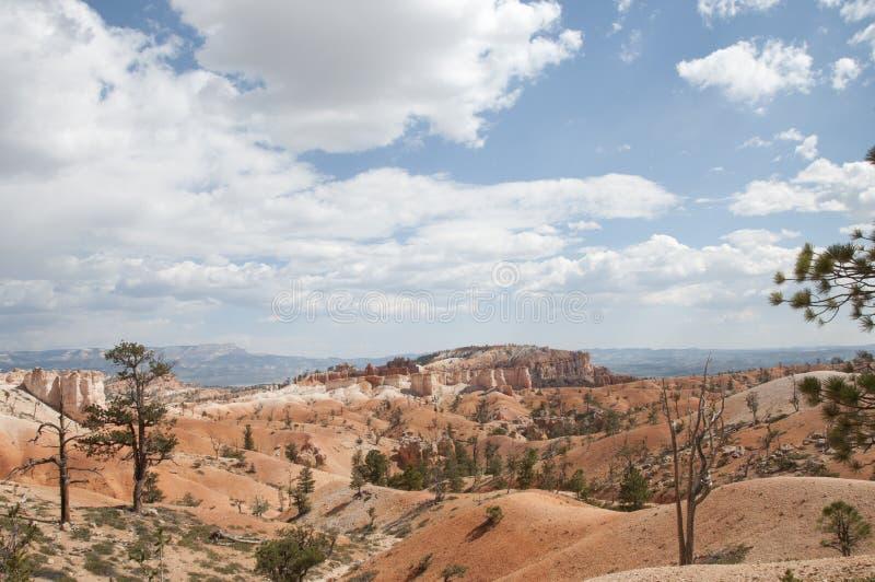 Bryce Canyon Hoodoos Desert Landscape stockbilder