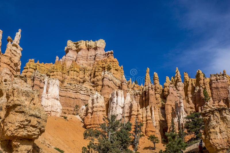 Bryce Canyon Hoodoos die omhoog van wandelingssleep kijken royalty-vrije stock foto