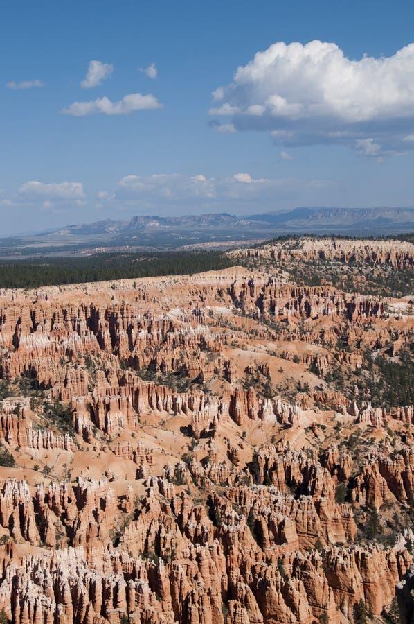 Bryce Canyon Hoodoos Mountain Landscape stock foto