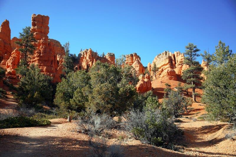 Bryce Canyon Hoodoos, Utah, de V.S. royalty-vrije stock afbeeldingen