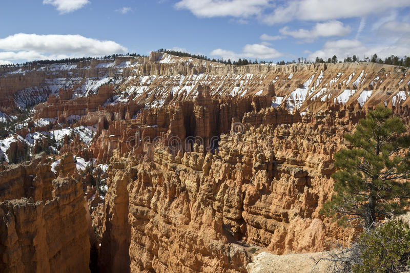 Bryce Canyon im Schnee stockbilder