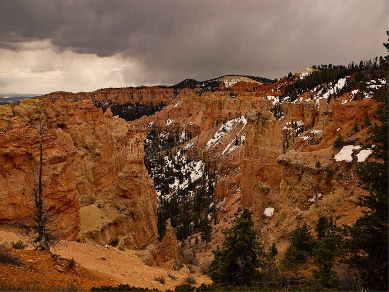Bryce Canyon Last Snow fotografía de archivo libre de regalías