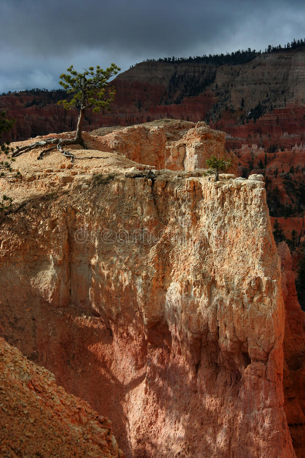Free Bryce Canyon Ledge Stock Image - 11251671