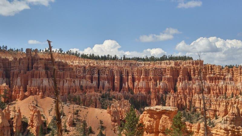 Bryce Canyon in middag stock afbeeldingen