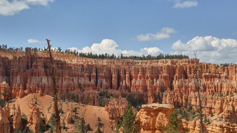 Bryce Canyon am Nachmittag stockbilder
