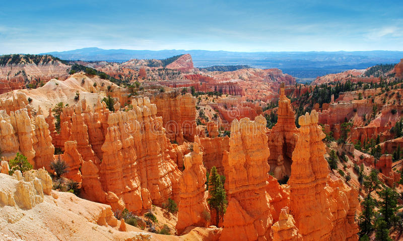 Bryce Canyon National Park royalty free stock image