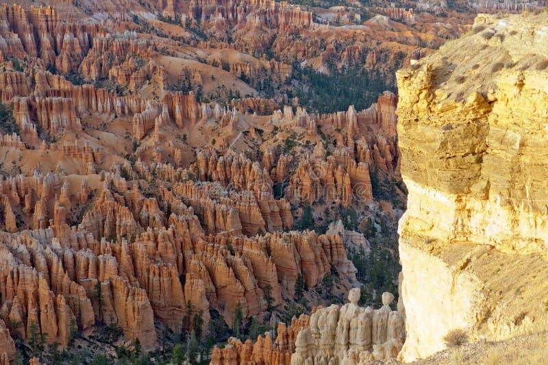 Bryce Canyon National Park royalty-vrije stock fotografie