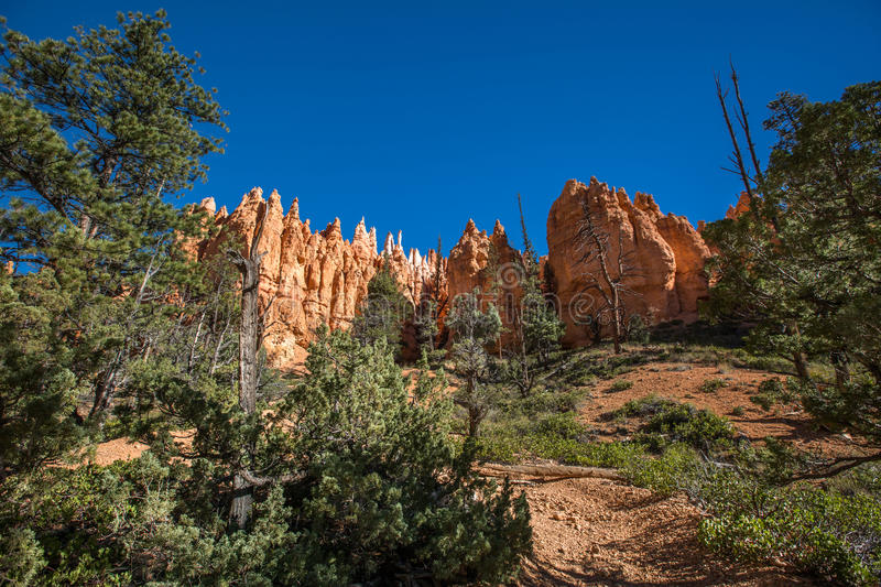 Bryce Canyon National Park fotografia stock