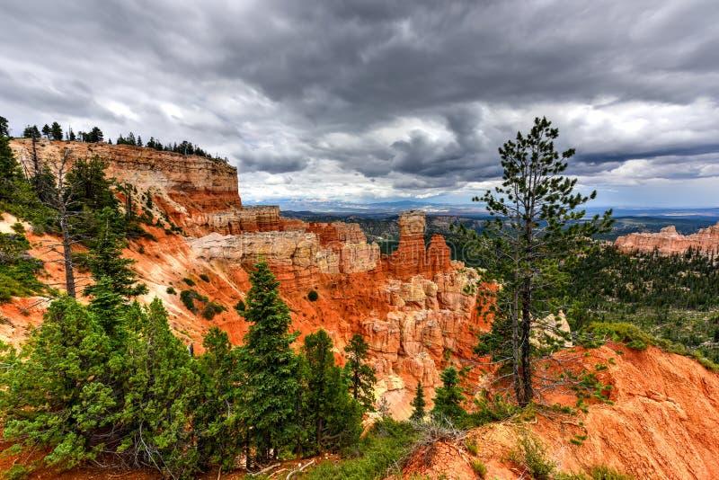 Bryce Canyon National Park foto de stock royalty free